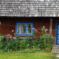 Igor Melika, Shcherbovetc village - 2