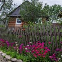 Helen Koshel, Shcherbovetc village 3
