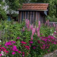 Helen Koshel, Shcherbovetc village 4