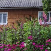 Helen Koshel, Shcherbovetc village 5
