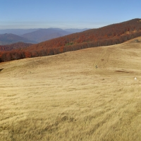 igor-melika-19-21-10-2012-vododil-48autumn