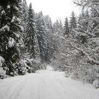 road-to-shcherbovetc-village