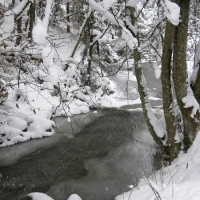 winter-in-kukavica